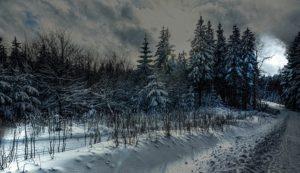 thüringen - wintersport am rennsteig